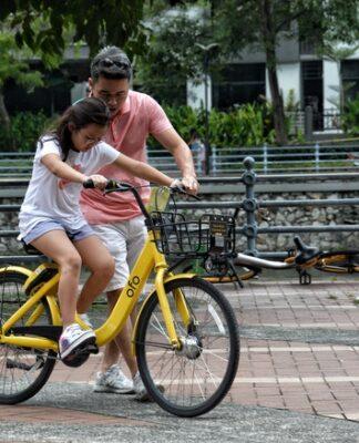 Wózki rowerowe dla dzieci